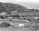 Picture of Isle of Wight - Aerial View c1930s - N605